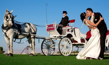 $111 for One 30-Minute Carriage Ride from MB's Horse & Carriage Co. ($200 Value)