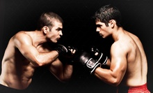 10 or 20 Kickboxing Classes at Ohana Martial Arts (Up to 80% Off)