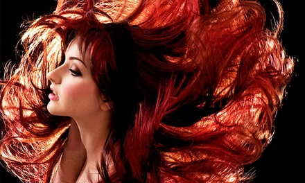 Haircut and Style with Optional Single-Process Color at Orange Olive Hair Gallery (40% Off)