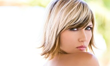 Haircut, Conditioning, and Blow-Dry with Optional Partial or Full Highlights at Hair Resistable Salon (Up to 64% Off)