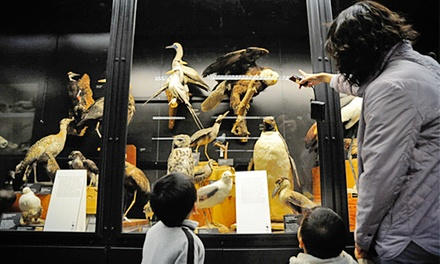 Memberships and Admissions to the Beaty Biodiversity Museum (Up to 51% Off). Five Options Available.