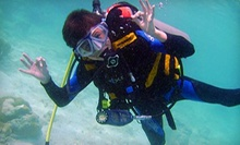 Scuba-Certification Class and Dive Sessions for One or Two at Ultimate Dive and Travel (Up to 74% Off)