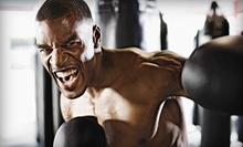 One- or Two-Month Membership to Advanced Fighting Systems and the Asylum Fight Gym (Up to 87% Off)