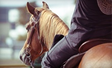 Two or Four Private Horseback-Riding Lessons at Hillside Stables (Up to 59% Off)