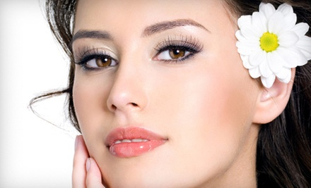 Permanent Eyebrow Filler or Eyeliner for the Upper or Lower Lids or Both at Fabulous Faces (Up to 78% Off)