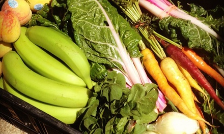 One-Year Co-Op Membership, Initial Bin, and Small or Medium Share of Produce from Urban Acres (Up to 43% Off)