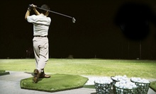 Golf Lessons and Practice at Markham Golf Dome (Up to 66% Off). Three Options Available.