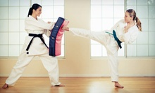 5, 10, or 15 Cardio Kickboxing or Adult or Kids' Karate Classes at USA Martial Arts New York (Up to 78% Off)