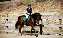 One, Three, or Five 60-Minute Horseback-Riding Lessons at Camulos Farm (Up to 56% Off)