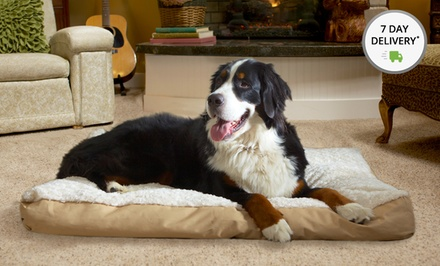 Deluxe Faux-Fur and Suede Pet Beds