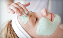 One or Three 60-Minute Facials at Ritzy Blue Spa and Salon (Up to 60% Off)