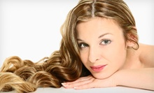 Haircut and Style with Optional Partial or Full Highlights or Single Process Color at Hair Gallery (Up to 55% Off)