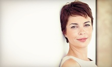 Haircut and Conditioning with Optional Highlights or Color from Bobbie Carey at Michael Susanne Salon (Up to 61% Off)