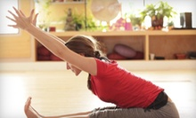 5, 10, or 20 Drop-In Yoga Classes with Instructional and Meditative Yoga CD at Baltimore Yoga Village (Up to 80% Off)