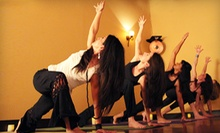 10 Yoga Classes or One Month of Unlimited Yoga Classes at Del Sol Martial Arts &amp; Fitness (Up to 74% Off)
