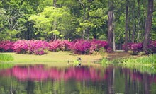 Seven-Day Admission for Two or Four at Brookgreen Gardens (Up to 55% Off)