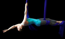 Aerial Silks and Trapeze Class for One, Two, or Four, or Four Classes at Dragonfly Aerial Arts Studio (Up to 51% Off)