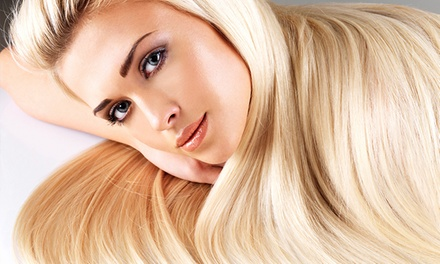 Haircut and Color, or Brazilian Blowout at Enchante A European Salon (Up to 57% Off). Four Options Available.