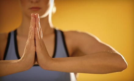 5 or 10 Classes at Shanti Yoga Shala (Up to 59% Off)