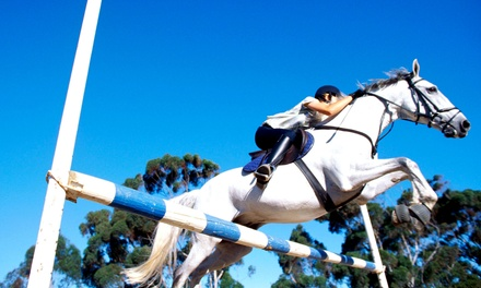 One or Two Private One-Hour Horseback-Riding Lessons at Valley View Acres (Up to 51% Off)