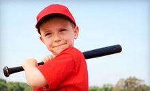 Baseball or Softball Summer Camp or Lessons at Ballplayers Edge (Up to 71% Off). Six Options Available.