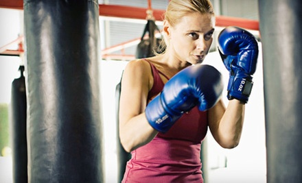 10 or 15 Boxing Classes at The Fitness Asylum (Half Off)