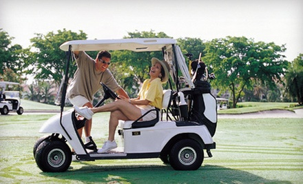 $39 for an 18-Hole Round of Golf with Cart Rental for Two at Meyerlee Country Club (Up to $98 Value)