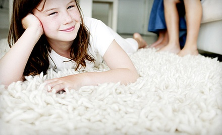 Carpet Cleaning for a One- or Two-Story Home from SteamTech (Up to 87% Off)