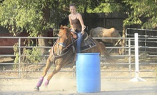 Two 2-Hour Barrel-Racing and Speed-Event Lessons for One or Two at Loveland Ranch (Up to 51% Off)