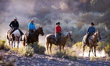 Two-Hour Group Horseback Riding Lesson and Trail Ride for Two at Meadowlake Ranch (60% Off)
