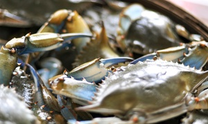 Admission For Two Or Four To The Baltimore Seafood Festival On Saturday, September 20 (49% Off)