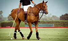 Introductory Polo Lesson for One or Two at Play Polo LLC (Up to 61% Off)