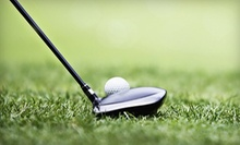 Indoor Golf Practice, Simulator Play, or Lessons at Driving Force Golf (Up to 53% Off). Four Options Available.