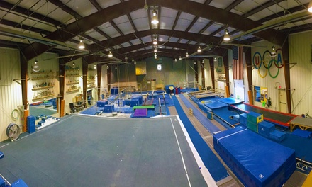 $39 for $85 Worth of Gymnastics Classes at Butler Gymnastics Club