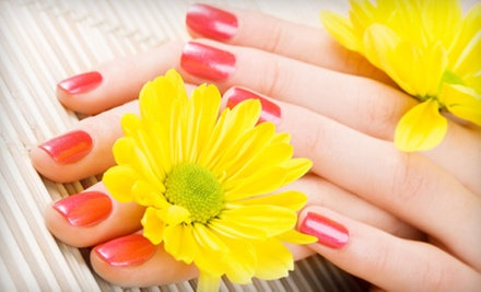 One or Two Manicures or One Mani-Pedi with OPI Gel Color and Paraffin at Robin's Tips N Toes Nail Salon (Up to 70% Off)