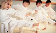 One Month of Cardio Kickback Classes or a Martial Arts Birthday Party Package at Fox Fitness (Up to 63% Off)
