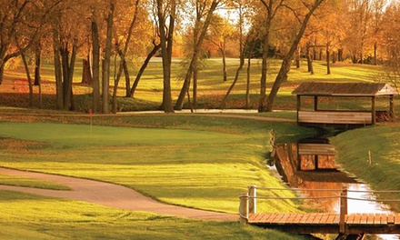Round of Golf with Cart Rental, Lunch, and Beer for Two or Four at Timber Creek Golf Course (Up to 48% Off)