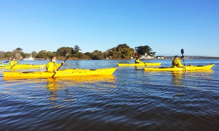 Three-Hour Kayaking Tour for Two, Four, or Six from Pacific Outfitters Adventures (Up to 57% Off)