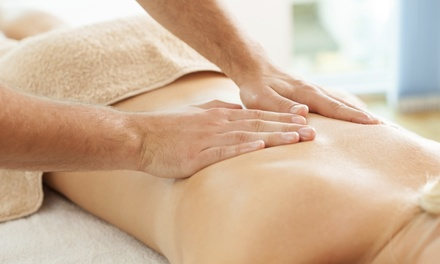 $49 for a Deep-Tissue Massage and Sauna Session at Wellville Massage & Healing Arts ($103 Value)