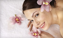 Three or Six Spa and Tanning Services at Planet Beach (Up to 83% Off)