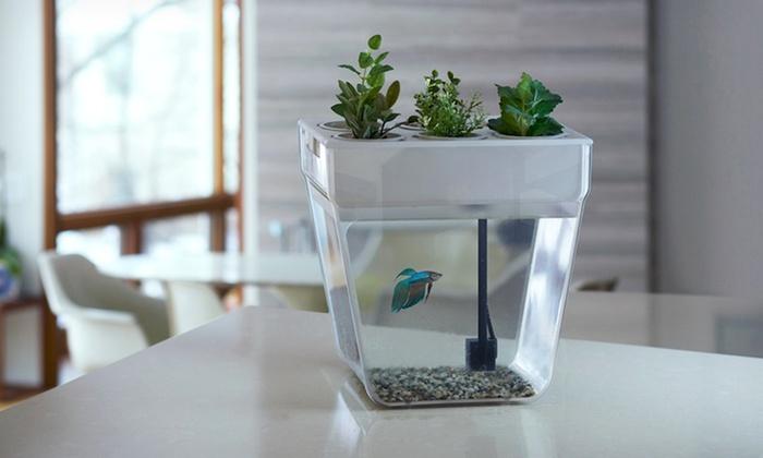 Aquafarm Fish Tank And Planter Groupon