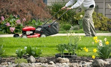 $69 for Four Lawn Mowings for Up to 8,000 Sq. Ft. from Joco Lawn & Turf ($160 Value)