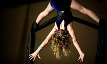 Two or Five Two-Hour Aerial-Silk Classes at Tucson Circus Arts (Up to 61% Off)