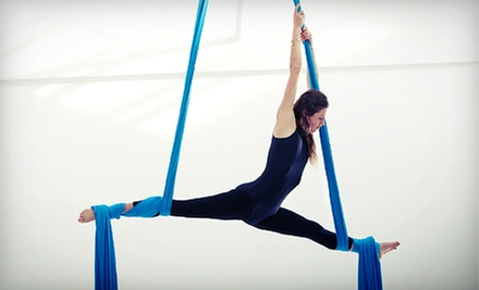 One 90-Minute Aerial Fitness Circus Workshop for One or Two at Go Ninja (Up to 56% Off)