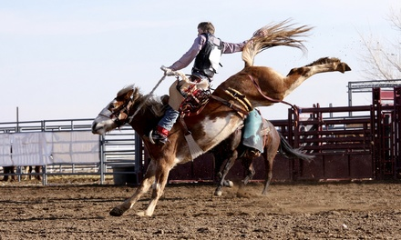 Admission for Two or Four to Crosby Fair and Rodeo (Up to 43% Off). Five Dates Available.