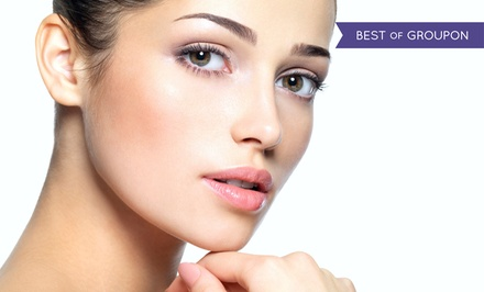 $179 for Permanent Upper and Lower Eyeliner or Permanent Brow Makeup at Rejuvenations Skin Spa ($500 Value)