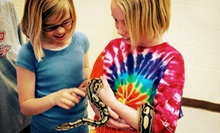 $75 for One Week of Kids' Summer Day Camp with Lunch at Exploration DayZ ($160 Value)