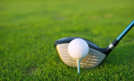 One or Two 60-Minute Golf Lessons with PGA Professional David Suh at San Bruno Golf Center (Up to 55% Off)