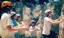 One, Two, or Three Groupons, Each Good for a One-Day Children's Rock-Climbing Camp from Treks and Tracks (Up to 61% Off)