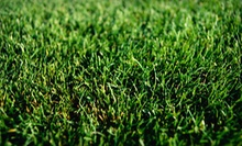 $25 for a Full Weed Control and Crabgrass Treatment from Weed Man (Up to $64 Value)